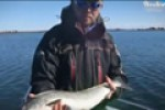 Tackle for trolling on small boat. Part I